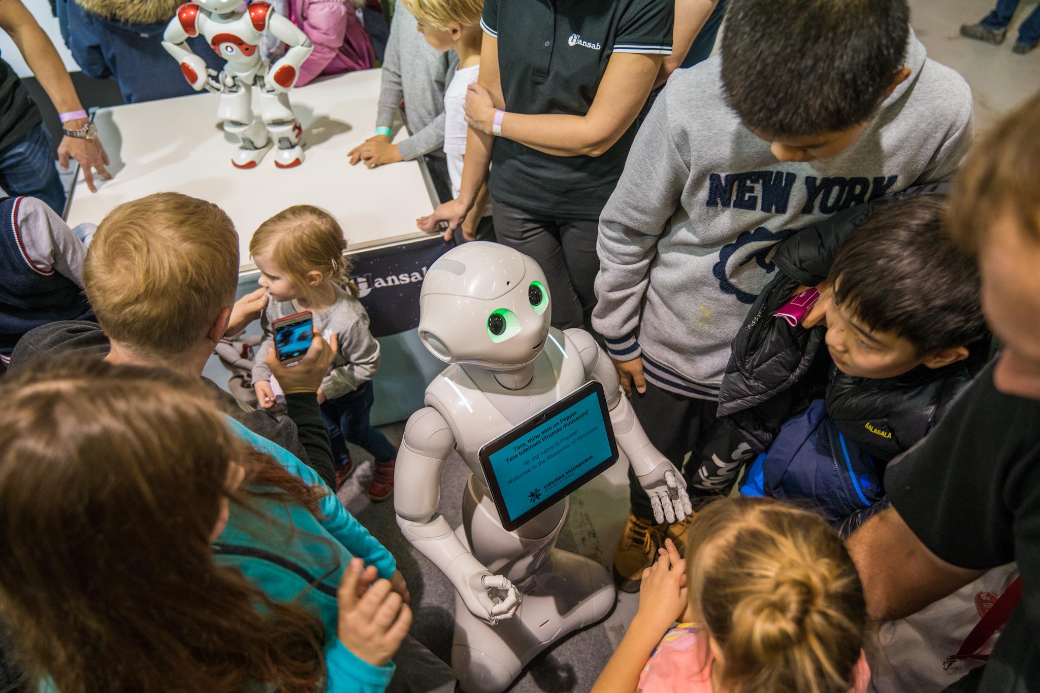 Robotex 2017 Tallinn (11)